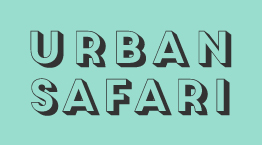 urban-safari